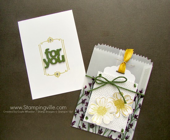 Simple gift card holder with vellum bag. #papercrafts #cardmaking #StampinUp
