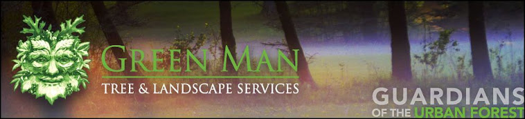 Green Man Tree & Landscape Services