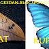 Klasifikasi Kupu Kupu dan Ngengat Dalam Metamorfosisnya