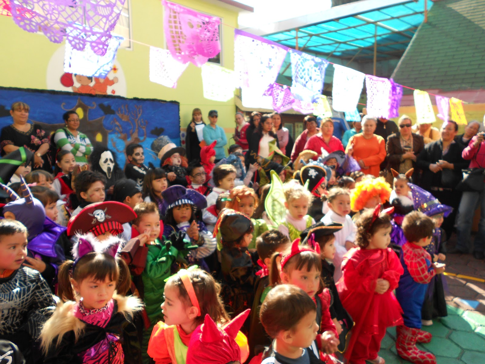 Colegio oliverio cromwell plantel tlalpan festival de for Colegio jardin de africa