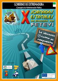 X JORNADAS ESTATALES DE LA FETEVI