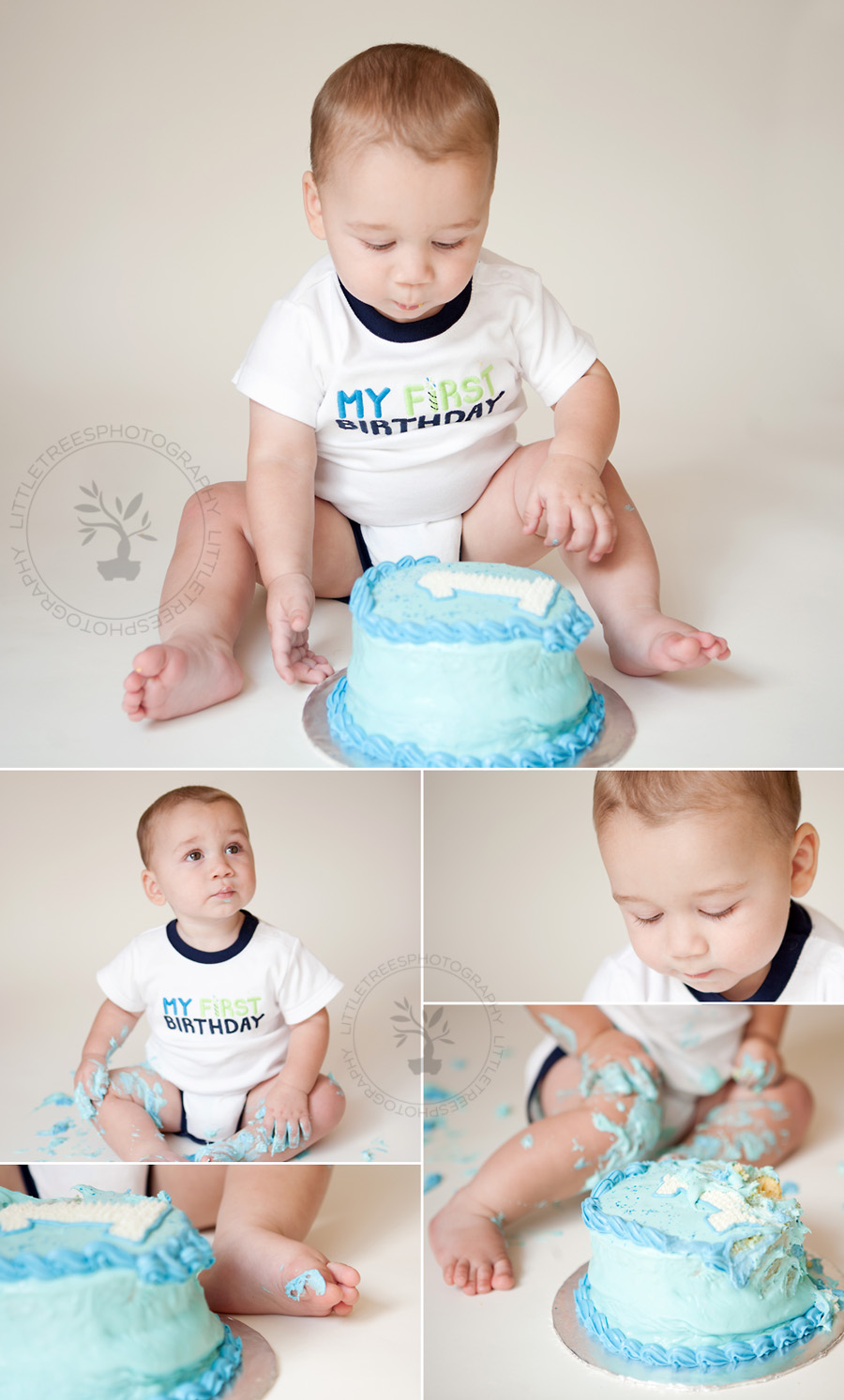 Blue Cake Smash, One Year