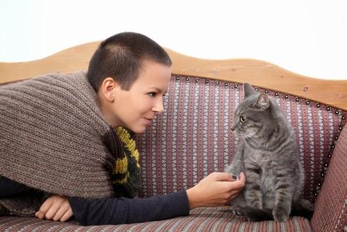 Trate o animal de estimação como o seu próprio