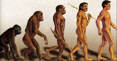 La selección natural de Darwin