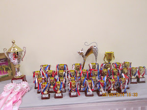 Prizes to be won by the cats on show.