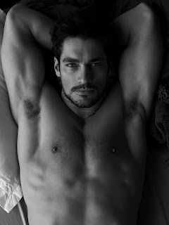 shirtless, man candy, alpha male, goatee, david gandy