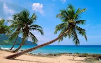 peisaje tropicale