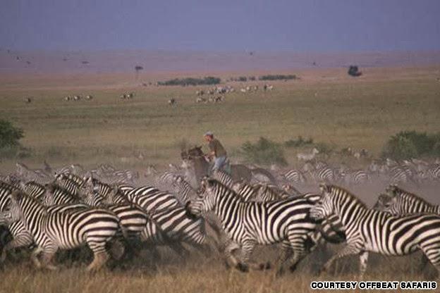 Riding safari, Kenya
