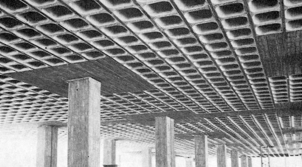 Artchist tipos de losas de concreto armado macizas for Losas de hormigon para jardines