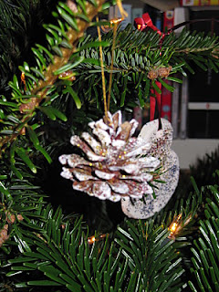 Christmas fir cones