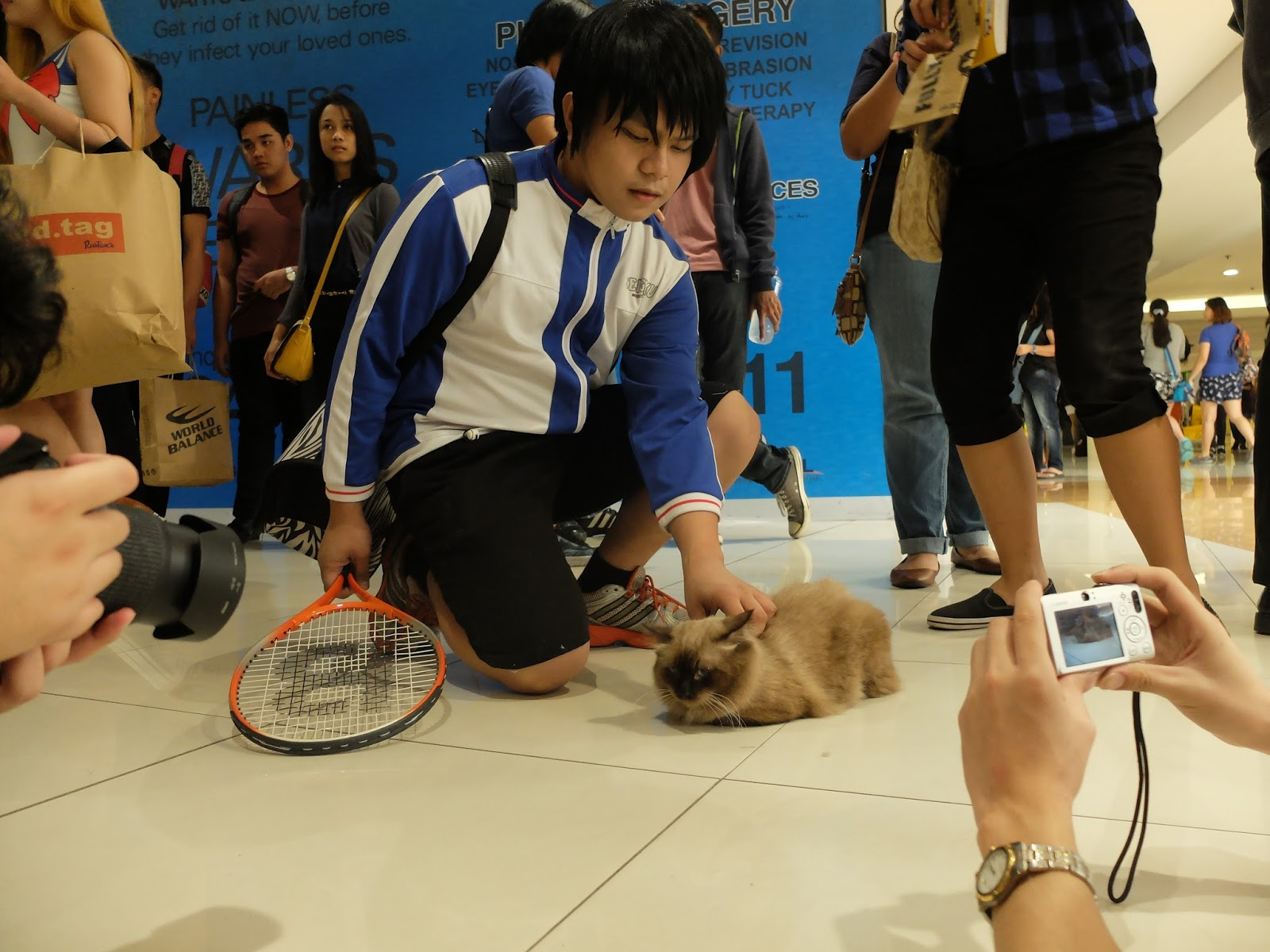 echizen.mine.nu Ryoma Echizen from Prince of Tennis...with an actual cat