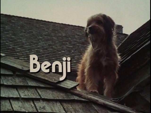 benji1974dvdr.jpg