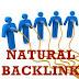 Cara Mendapatkan Backlink Natural