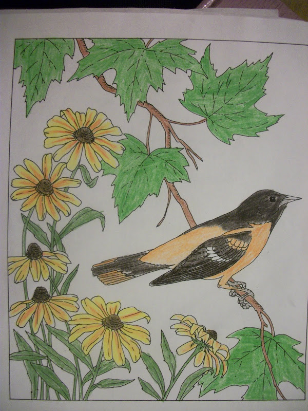 Art - Coloring State Birds and Flowers title=
