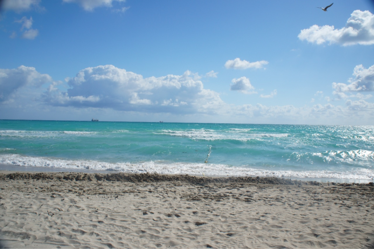 Free image download beach