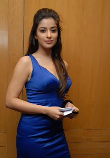 madhurima Pictures at crescent cricket cup 2012 pressmeet (1)