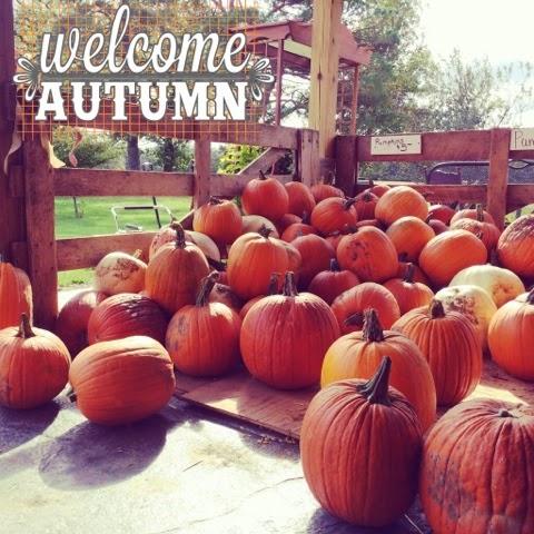 http://choosehappybb.blogspot.com/2014/10/the-pumpkin-patch.html