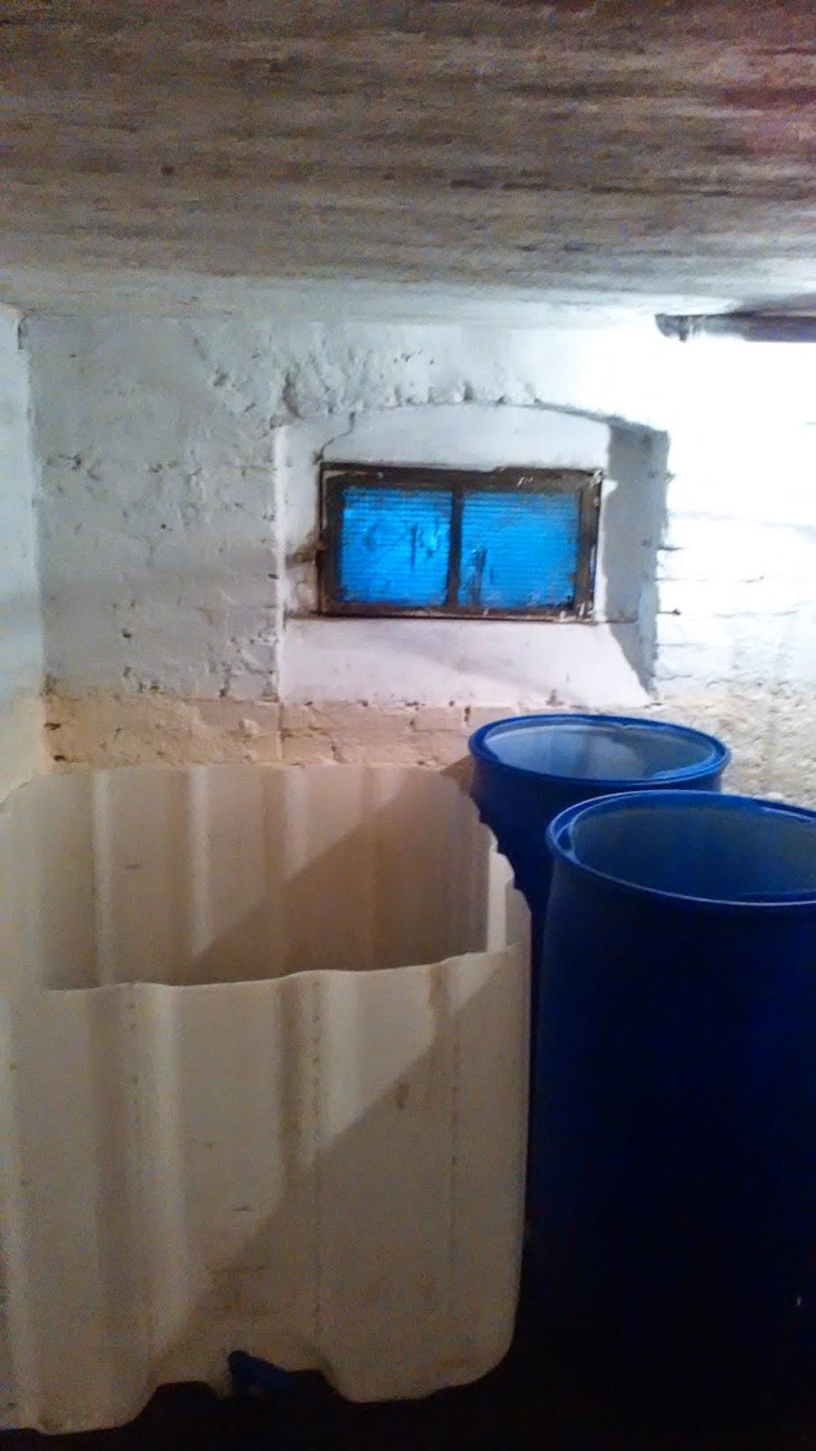 Przygotowania do budowy systemu akwaponicznego w piwnicy