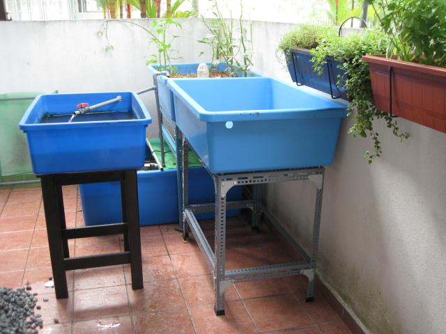 Aska 39 s aquaponics new grow bed putting it all together for Aquaponics grow bed