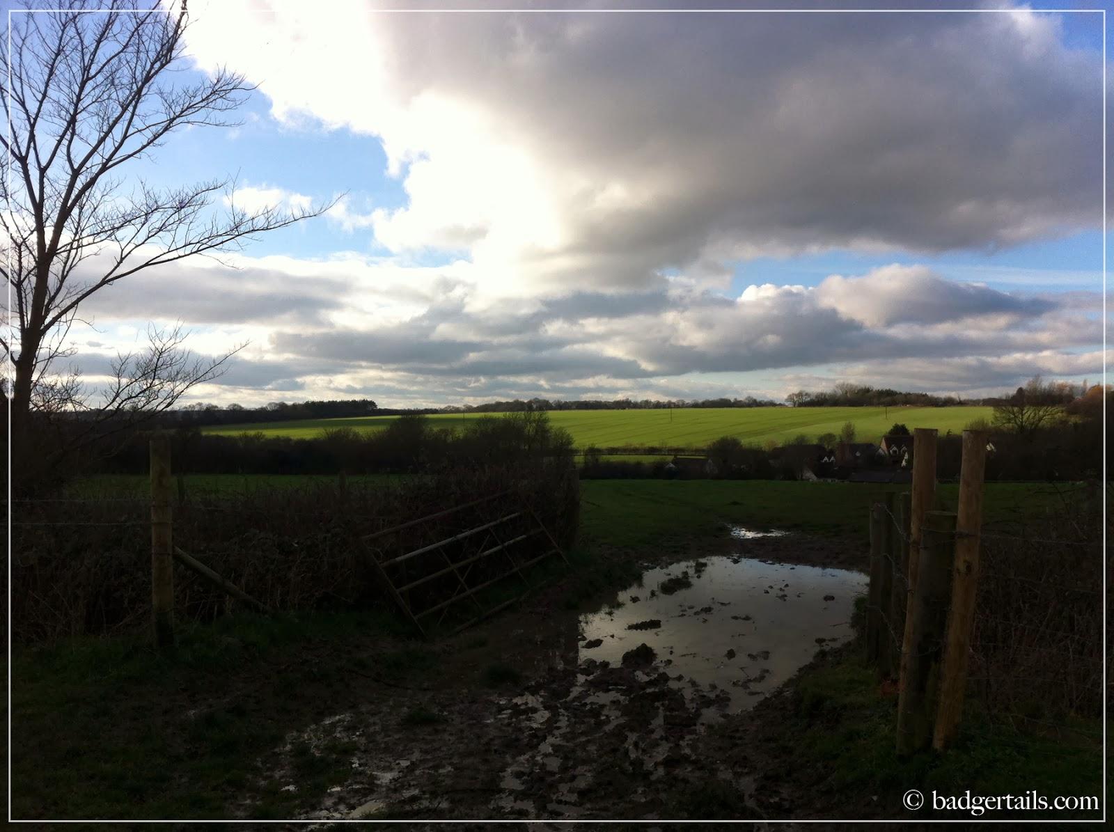 beautiful english countryside fields