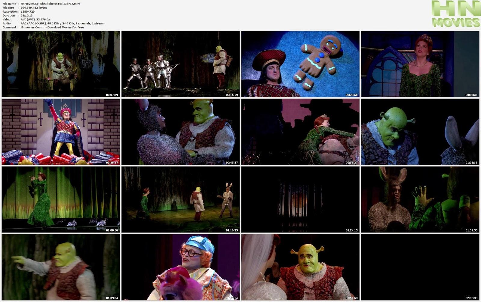 movie screenshot of Shrek the Musical fdmovie.com