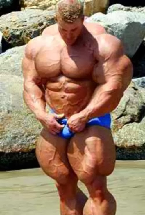 dog muscle building steroids