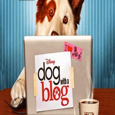 Cainele Blogger