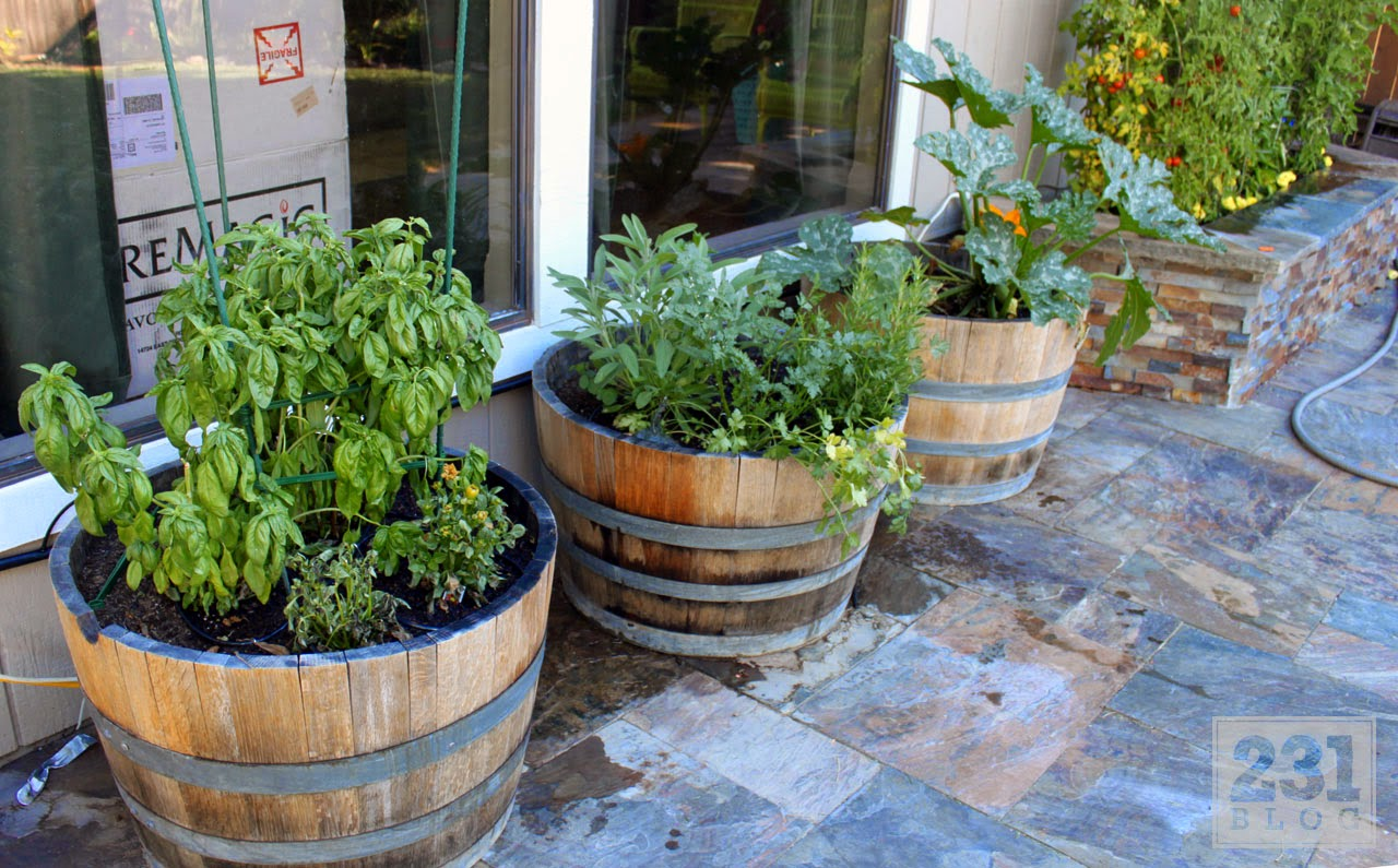 wine barrel container gardening