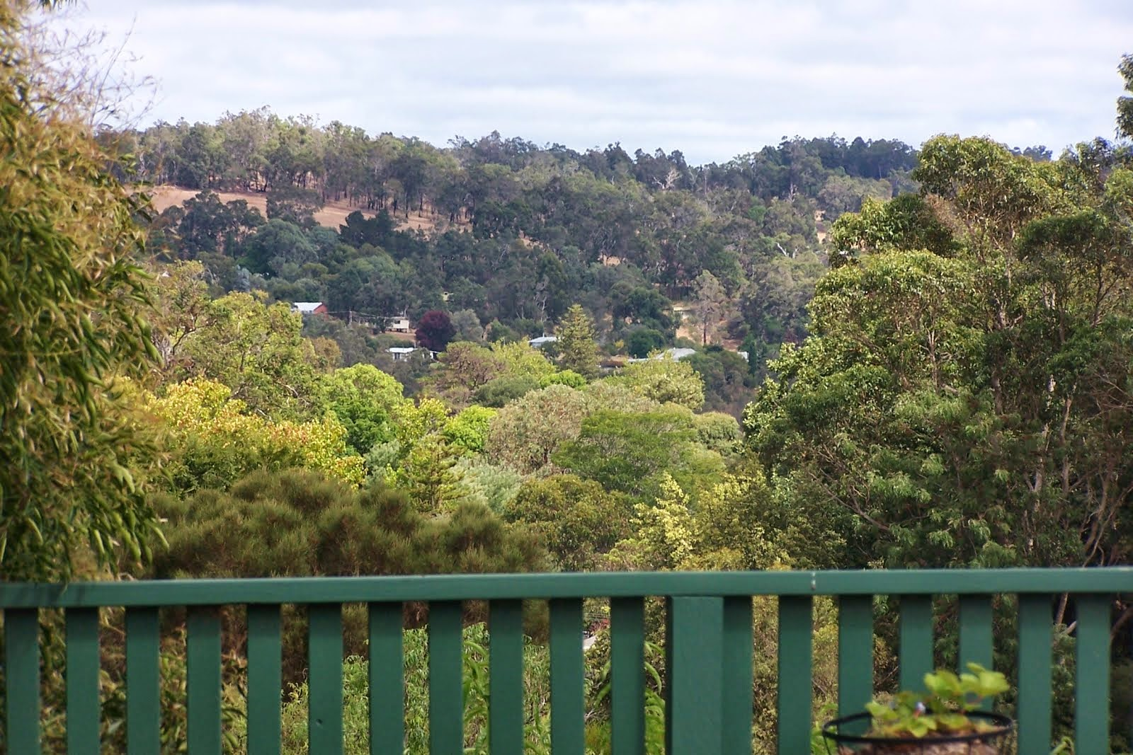 Bridgetown, Western Australia