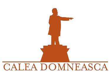 Calea Domneasca