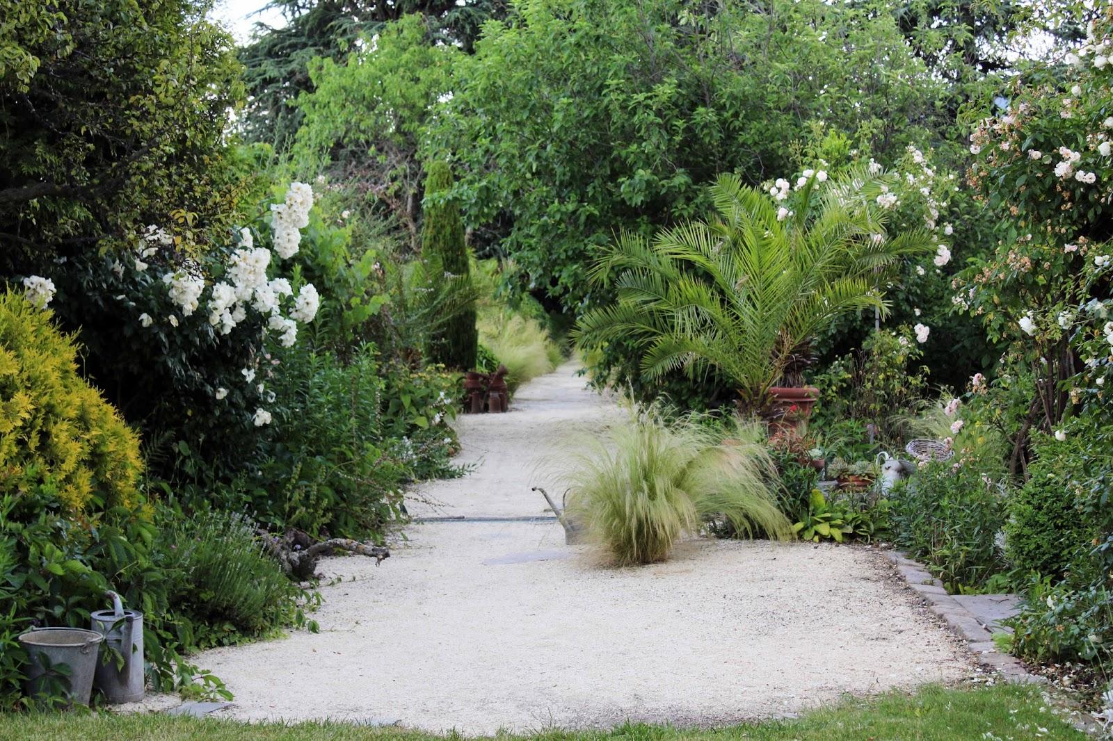 Au bord du ruisseau rendez vous au jardin botanique de for Rendez vous au jardin 2015 yonne
