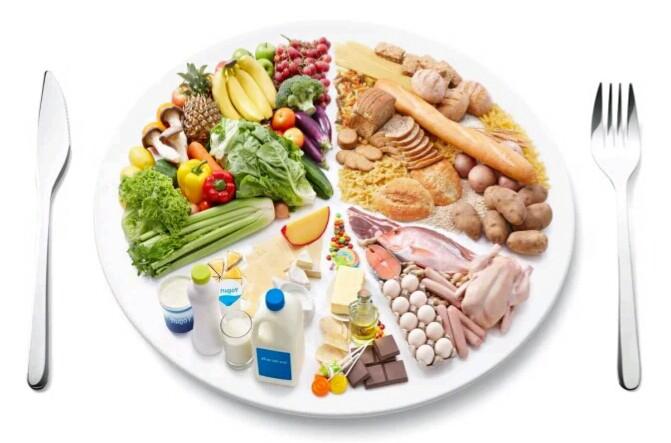 pola makan untuk membentuk otot dada