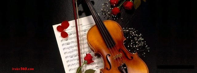 Ảnh bìa lãng mạn cho Facebook - Cover FB romantic timeline, hoa hồng cây đàn và lời nhạc