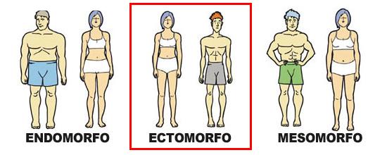 Dieta y entreno para ectomorfos - Culturismo total