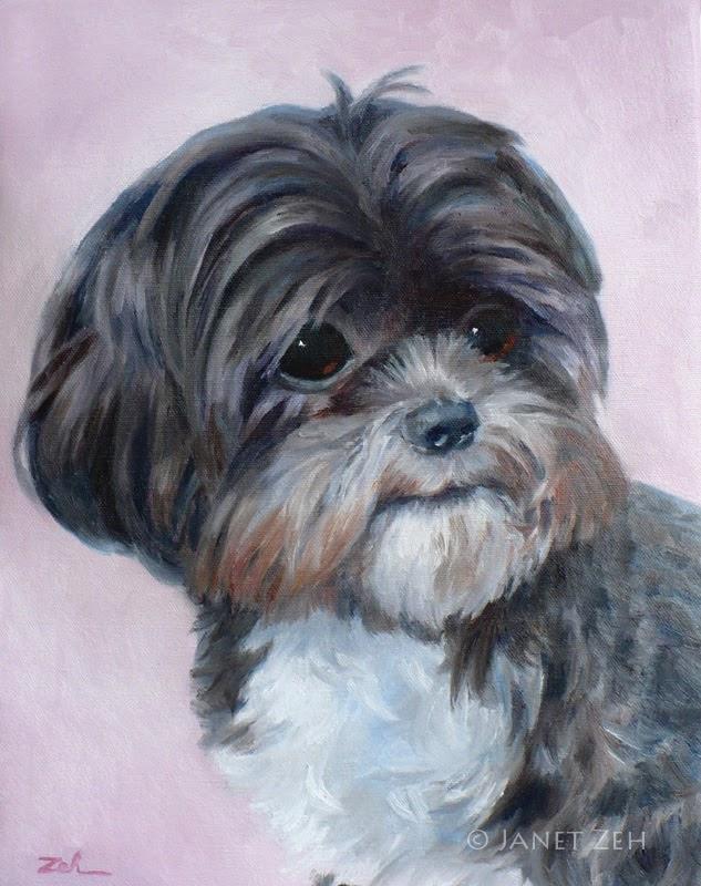 Shih Tzu Pet Portrait Oil Painting