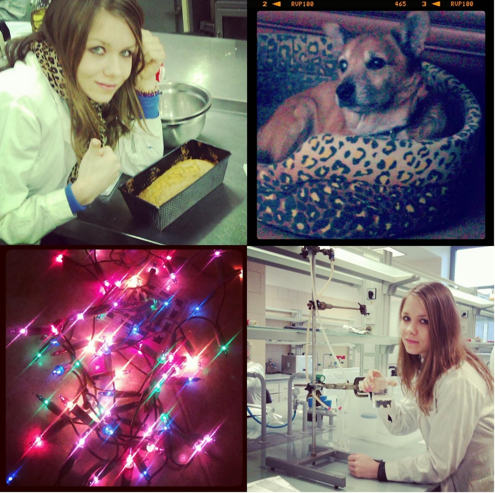 laboratorium szczecin