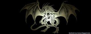 couverture fb dragon noir