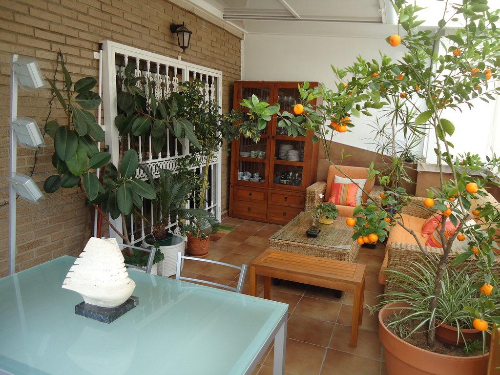 La terraza de adriana concurso terrazas patios y for Patios y terrazas