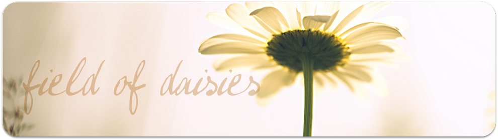 a field of daisies - a personal style blog