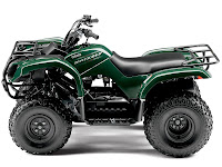 2013 Grizzly 125 Automatic Yamaha pictures 1