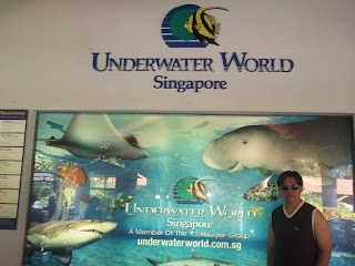 Singapore Sentosa Underwater World Singapore