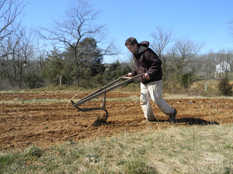 After Tilling, Ed Made The Furrows With A Push Plow. He Is Far Better Than  Me At Making Straight Rows.
