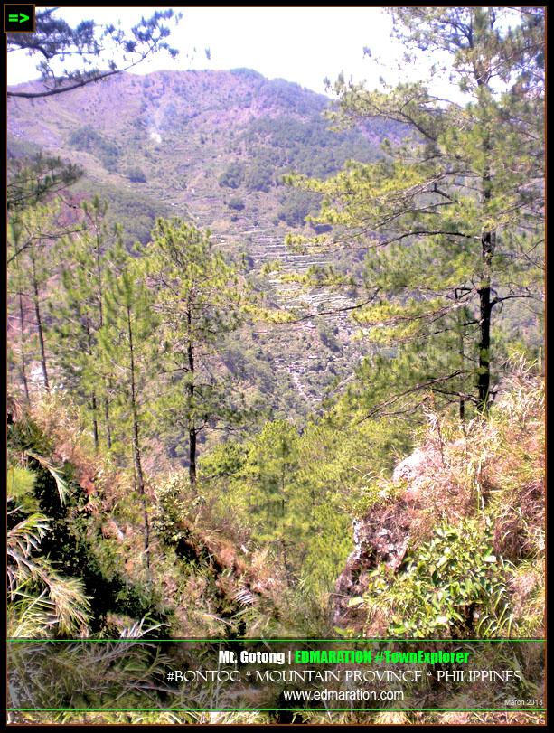 Mt. Gotong, Alab Oriente, Bontoc, Mountain Province