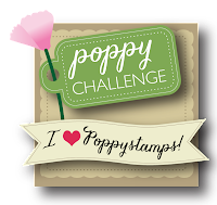 Poppystamps Challenges