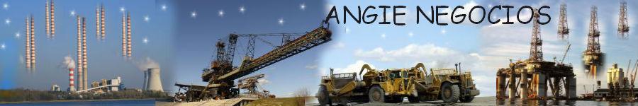 ANGIE NEGOCIOS