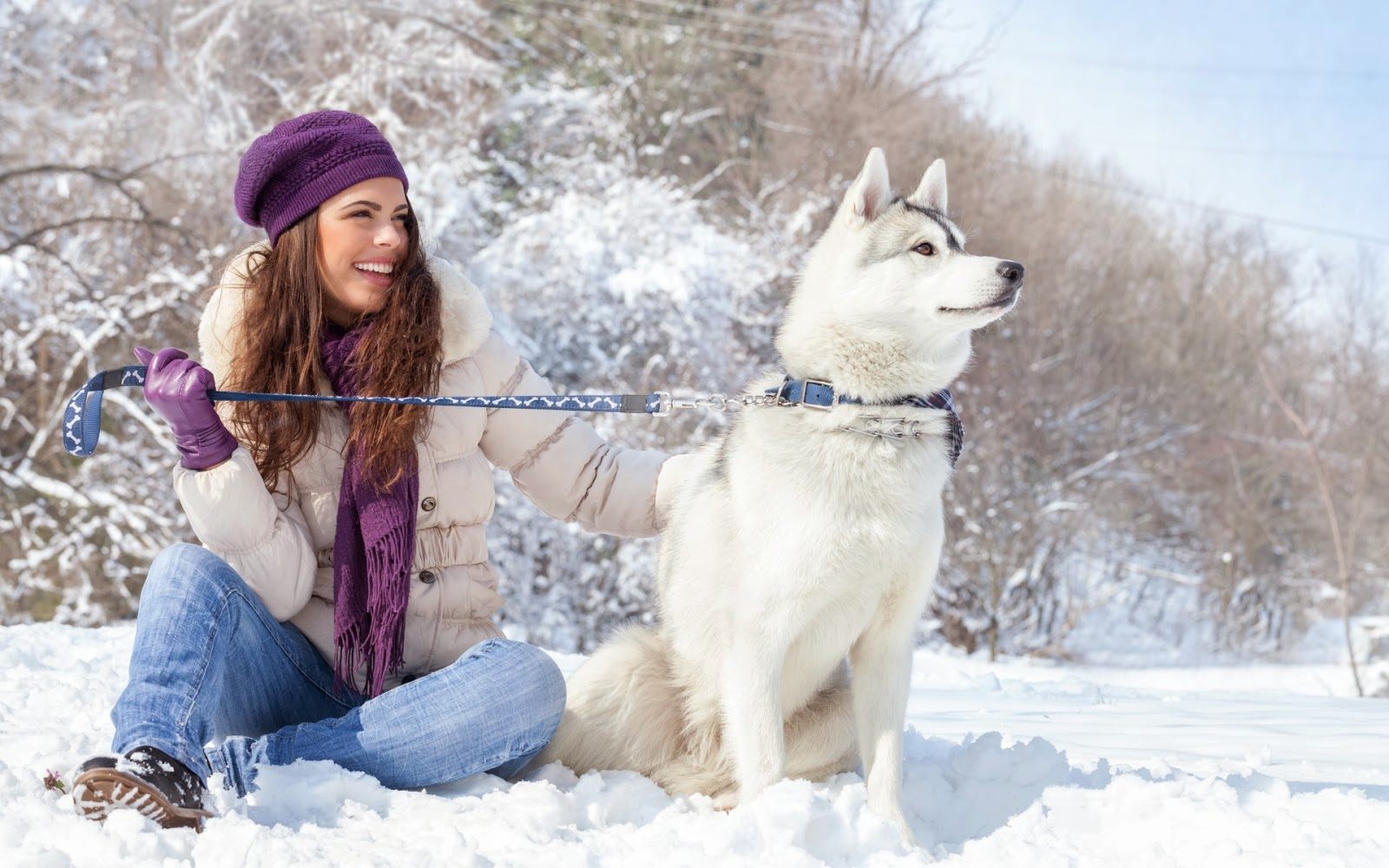 Beautiful Woman And Husky Dog
