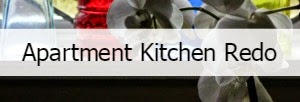 Apartment Kitchen Redo