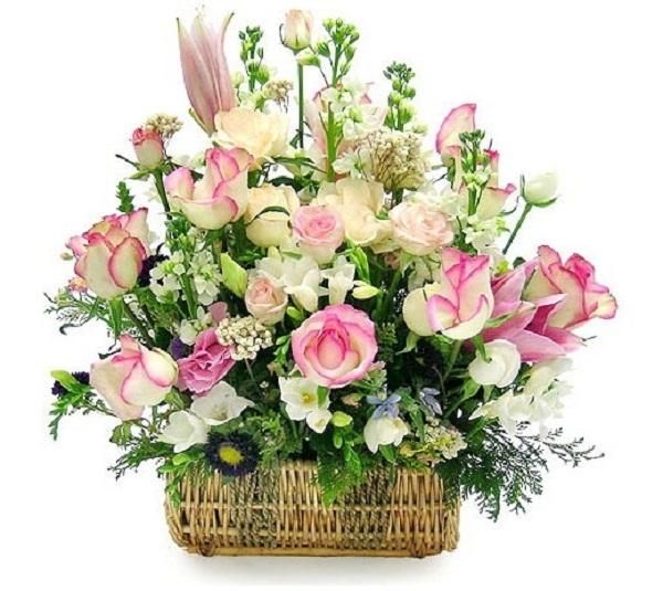 Bó hoa 20/11 đẹp nhất