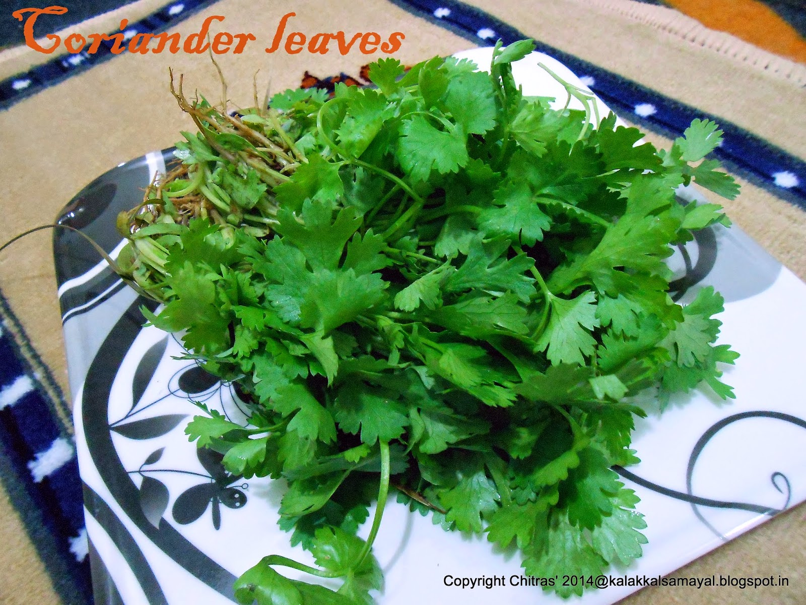Kothamalli Thazhai [ Coriander Leaves ]