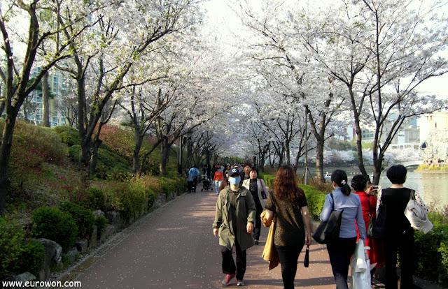 Coreanos paseando por le parque del lago Seokchon de Seocho